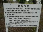 tokiwa_21.jpg