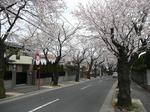 tokiwa_31.jpg