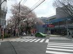 tokiwa_5.jpg